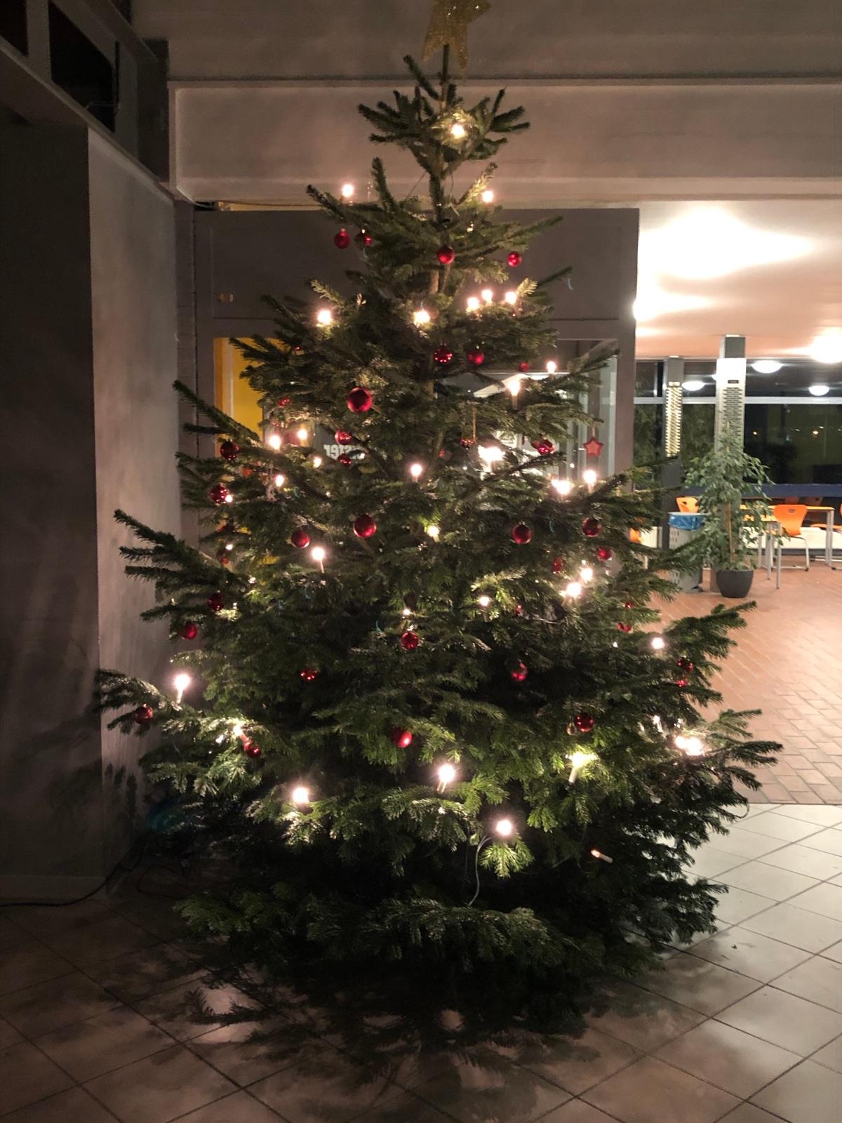 Fröhliche Weihnachten 2019!
